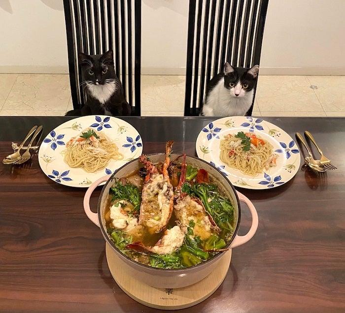 藤あや子、ご近所から貰った伊勢海老で豪華な夕食「最高に美味しい」