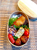 飯田圭織、子ども達に大人気な『コストコ』品入れた弁当「とっても大好き」