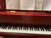 高橋真麻、夫からピアノのレッスン中に指摘されたこと「うるさいって言っていました」