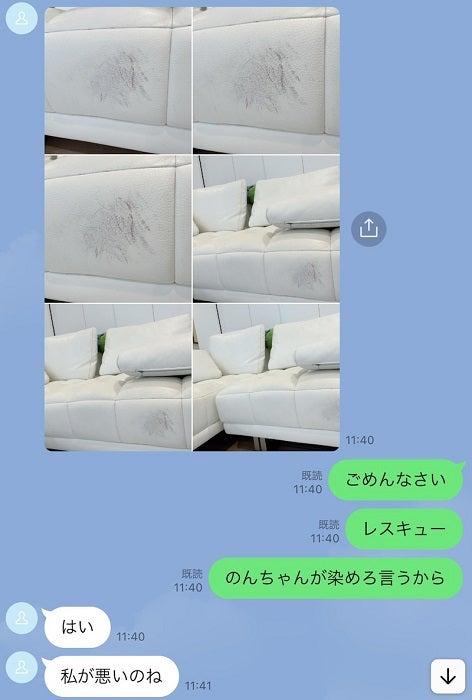"""アレク、""""100万円以上""""のソファーを汚し妻・川崎希からLINE「怖すぎて寿命が縮まるよ、、、」"""