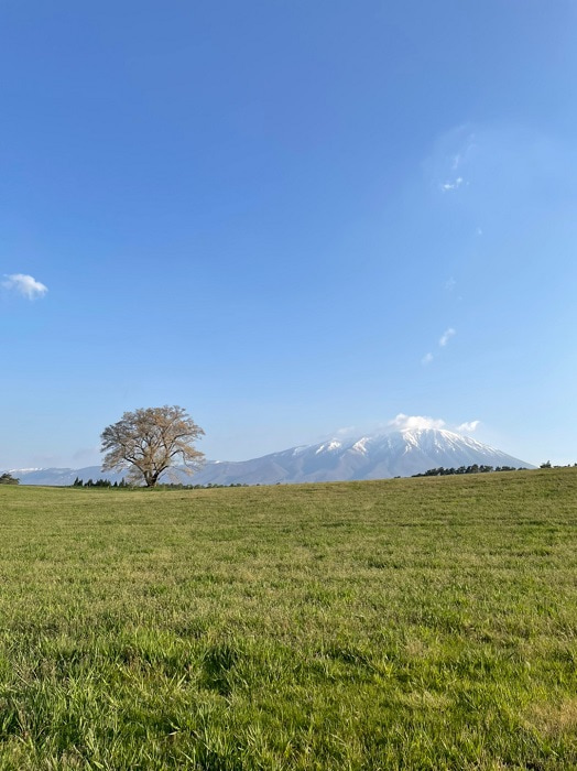 天津・木村、家族の岩手県への移住が決定したことを報告「いっぱい楽しいこと見つけます」