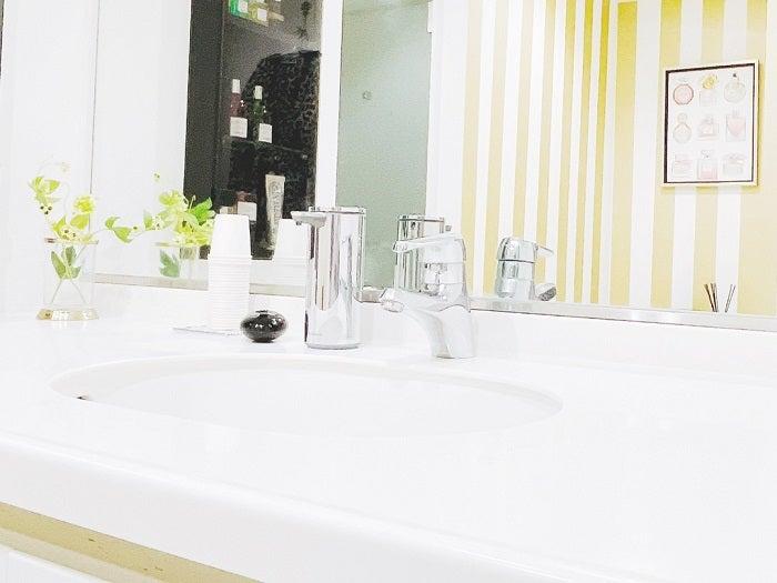渡辺美奈代、シンプルになった自宅のバスルームを公開「お掃除楽する為?笑」