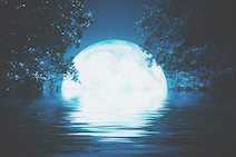 7月24日は水瓶座の満月 頑固さを手放して、自分らしい自由を手に入れよう
