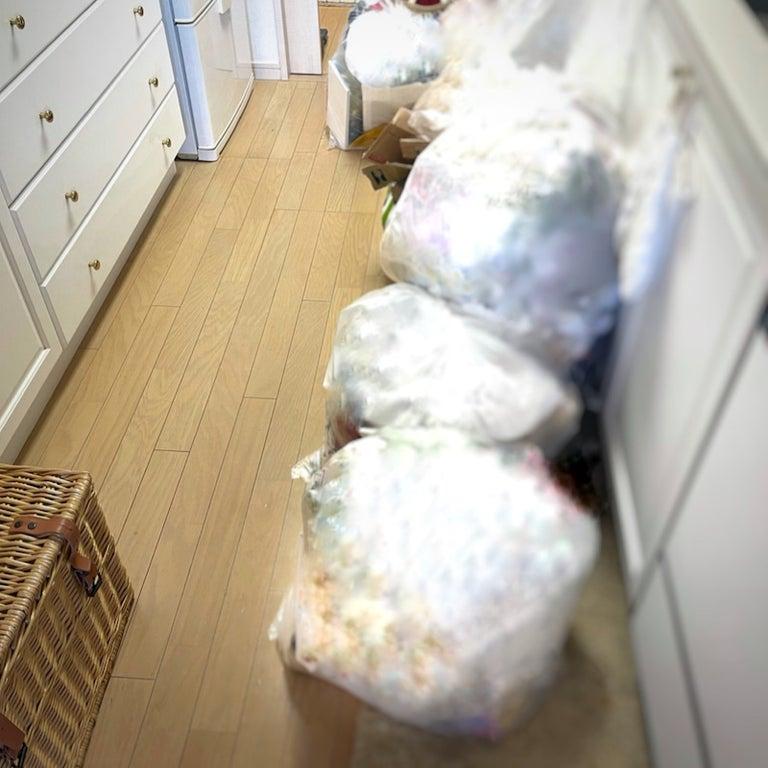アンミカ、半年に1回の自宅の整理で12袋分を処分「我が家だけのルール」