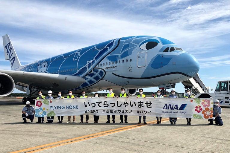 ANA、「フライングホヌ」の遊覧フライト実施 新千歳空港発着で