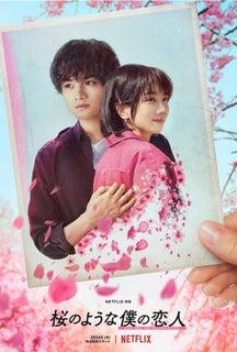 中島健人主演『桜のような僕の恋人』ティザー予告解禁!微笑む松本穂香をそっと抱き寄せるティザーアートも