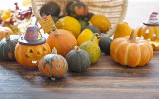 10月25日~10月31日の週間運勢占いランキング! 1位の星座は…?