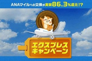 ポイントサイト「モッピー」、ANAマイルへ86%・JALマイルへ80%で交換できるキャンペーン開催