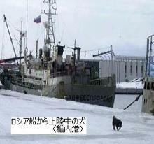 荻島動物病院のブログ