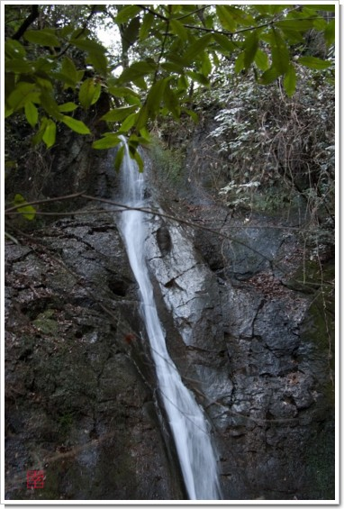 津賀野滝上中部
