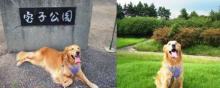 すぐ隣に最適な公園!なんてイイ条件!(^^)!
