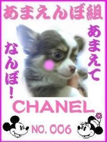 ☆あや☆のブログ