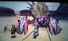 なまぬるいスライムにはさまれて眠りたい-砂漠で蟹退治