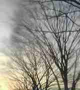 氷川奈都の恋の詩、愛の歌、独り言-早くあったかい春が来ないかなーぁ。