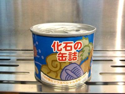 ぐんま昆虫の森           ミュージアムショップ店長の日記-化石の缶詰