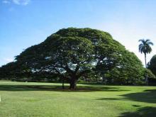 Sep2006-Hawaii-3