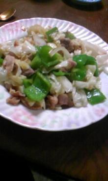 A lazy life-野菜炒め
