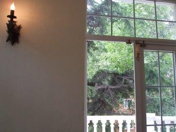 nico window