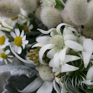 ナチュラルな野の花の5シェアブーケ[大宮モノリス様へ]の記事より