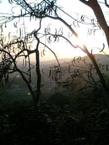 アシュラムから見る夕日
