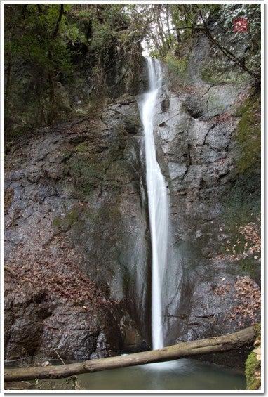 津賀野滝全景