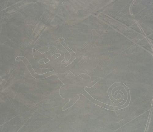 偽ナスカの地上絵