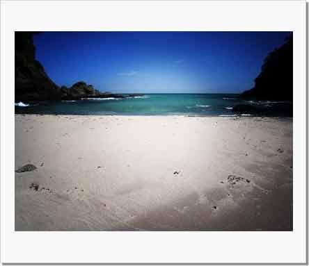 いつか見た青い海