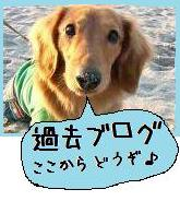 sora日記-rinku