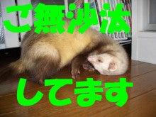 のほほ~ん動物園-249