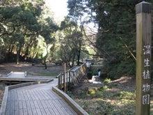 机上都市第三公園-湿生植物園