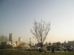 ☆ブログ版☆ 「東京ホームレス」 村上知奈美-西郷山公園③
