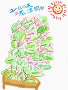 J.ヤンズのつれづれ絵日記道中-ユーロの花