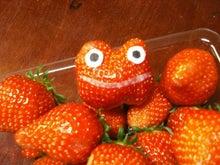 とんとんとん日記☆楽しい生活の知恵袋-カエルいちご