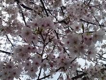 瓦川 ユミのブログ-090328_1322~01.jpg