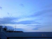 LITTLE WING-春の空