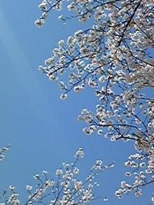 日々是人生-Image003.jpg