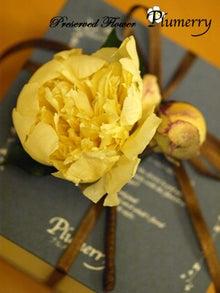 Plumerry(プルメリー)プリザーブドフラワースクール (千葉・浦安校)-アイスフラワー 髪飾り