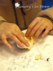 Plumerry(プルメリー)プリザーブドフラワースクール (千葉・浦安校)-アイスフラワー ウエディング 髪飾り