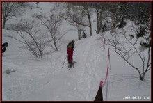 ロフトで綴る山と山スキー-トップ選手