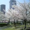 大阪からの画像