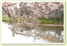 毎日はっぴぃ気分☆-鏡桜