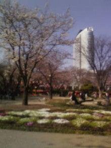 関東平野の端っこで-20090405145611.jpg