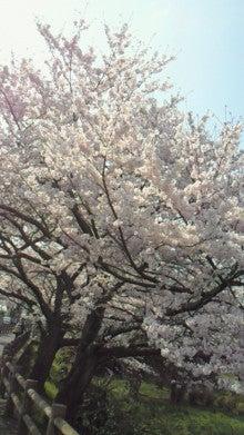 shinya0317さんのブログ-200904071434000.jpg