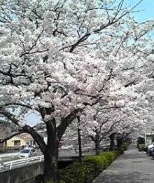 幸せな日々☆-200904081