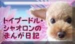 Hiroのブログ-バナー.jpg