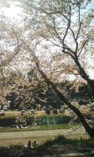 ニャンコとまったり~♪-sakura