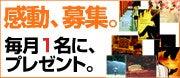 吉井春樹からの手紙-感動募集
