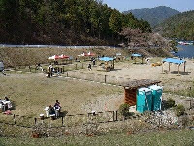 旅犬Laniのほほん風船記-嵐山・高雄パークウェイドッグラン