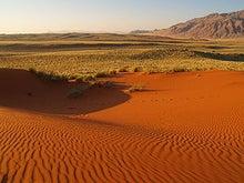 砂漠に降る花 (王道恋愛ファンタジー)-砂漠
