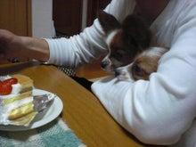 manasan's blog-プリンケーキ2